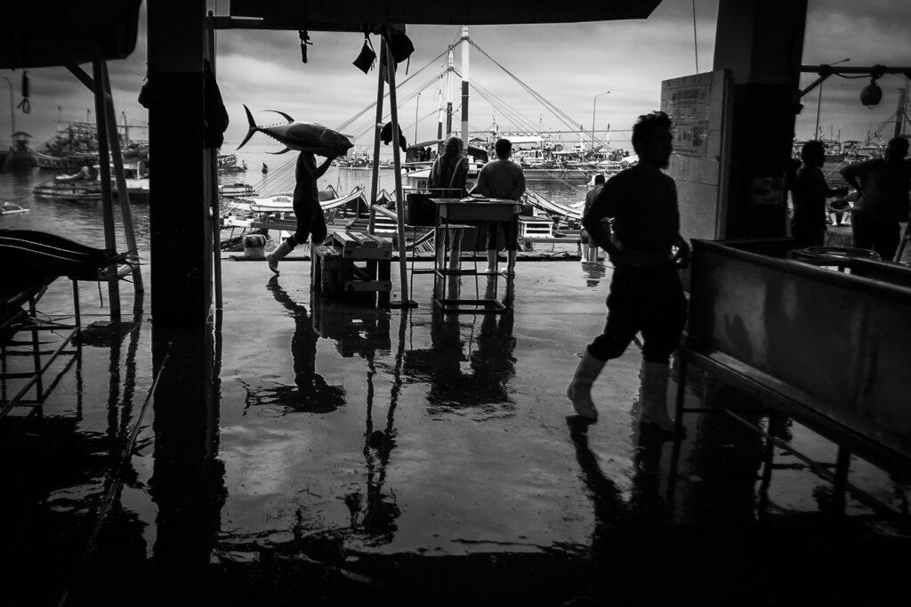 Primer Premio Individual. Categoría: Mejor trabajo en el exterior. Un pescador camina por el puerto de General Santos, Filipinas, con un atún de la especie yellowfin. Nando Rivero