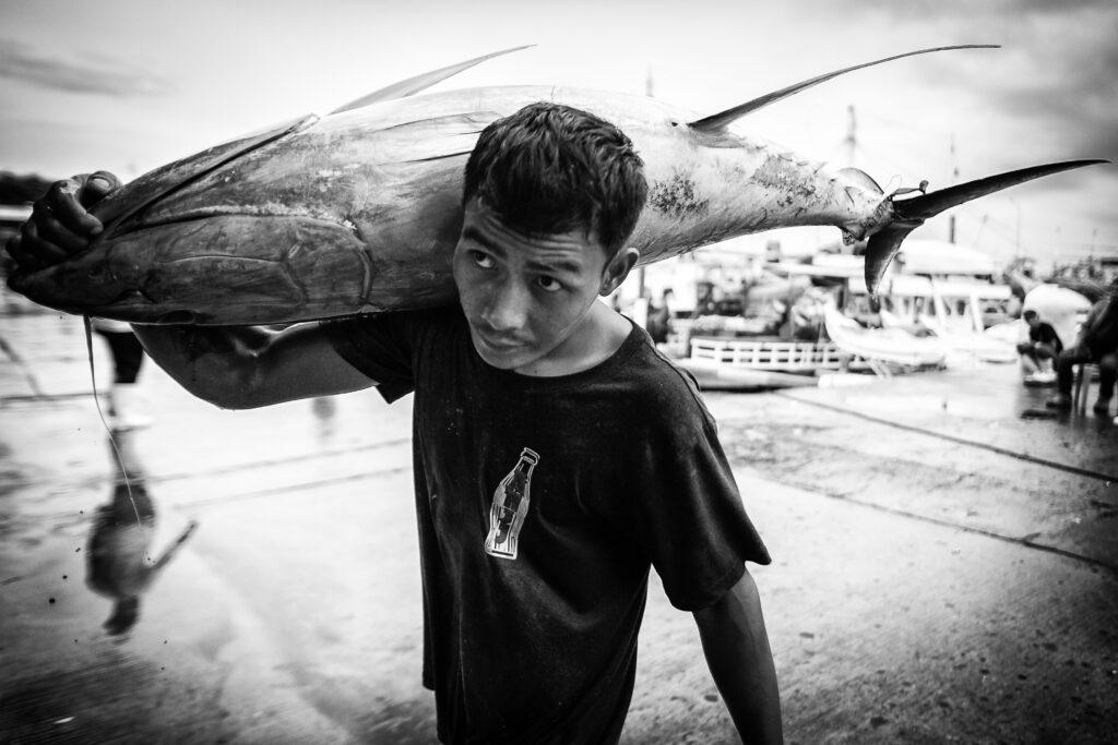Primer Premio. Categoría: Mejor trabajo en el exterior (Serie). Un pescador filipino carga con un atún para ser pesado en el puerto de General Santos, Filipinas. La industria del atún es la columna vertebral de la economía de esta localidad situada en la isla Mindanao, Filipinas. Nando Rivero